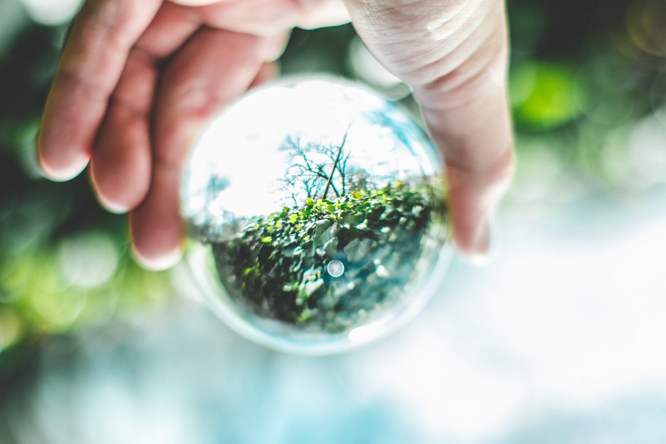 环境保护|万博官方网站manbetx组织环境保护骨干培训